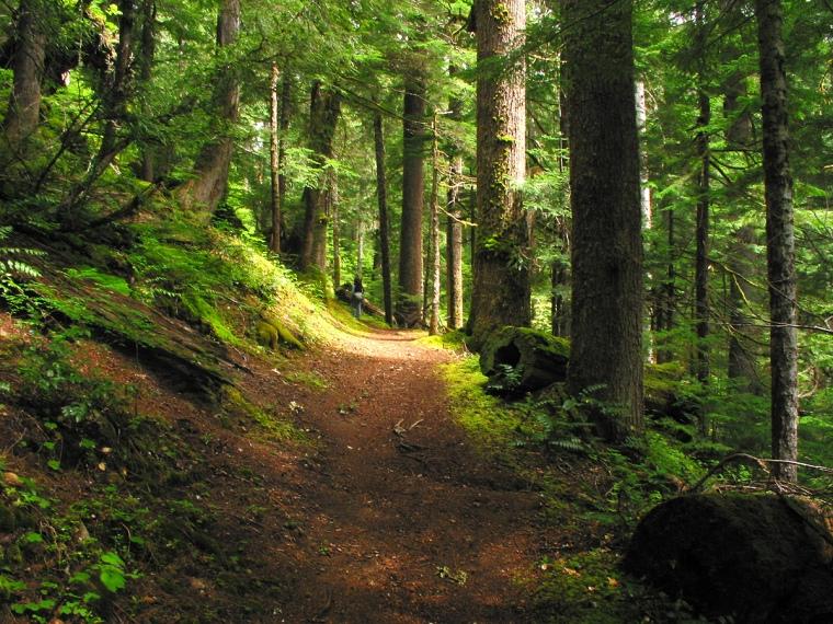Pacific Northwest Photo by Rkirbycom