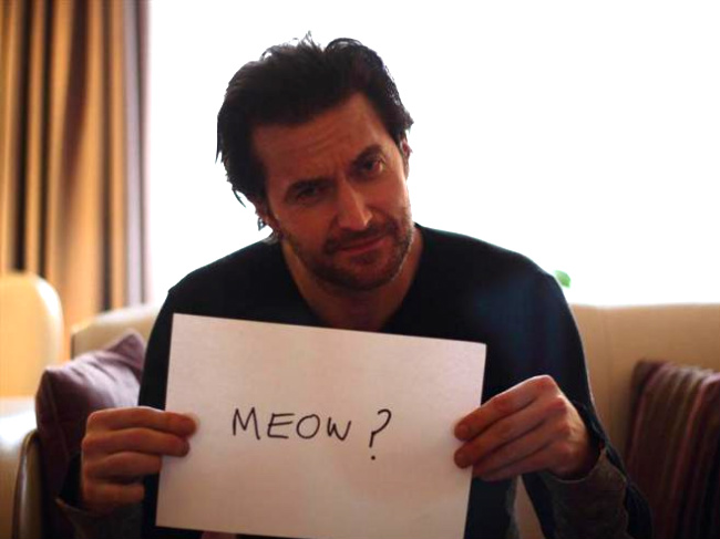 Guess he's not a cat person. Image from RAFrenzy (because my HD is now devoid on unbearded Richard Armitage pics)