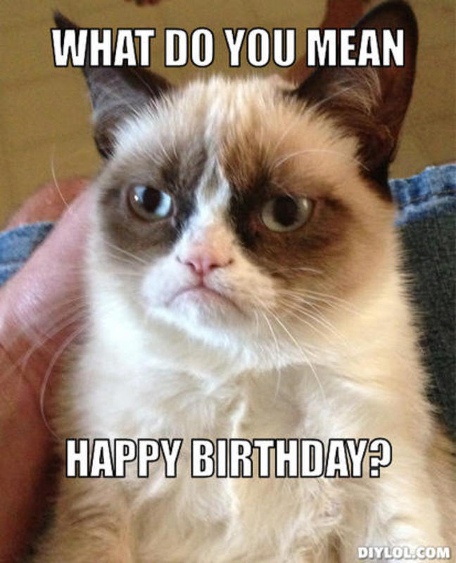 resized_angry-cat-meme-generator-what-do-you-mean-happy-birthday-120b0d
