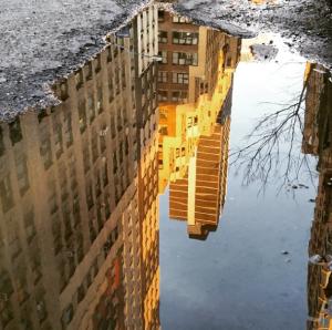 @Irablockphoto on Instagram